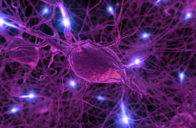 How wifi Nanoparticles can Talk To The Brain